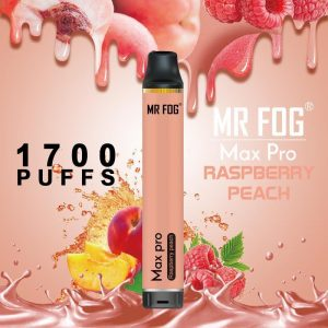 Mr. Fog Max Raspberry Peach